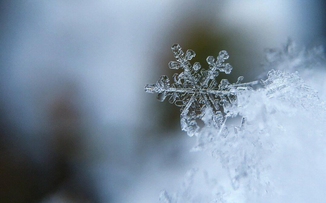 10 dagen winter reset